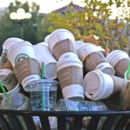 Starbucks disposable cups deemed 'unrecyclable' by major recycling companies
